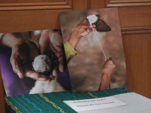Beautiful photographs taken and presented by Zoe Doubas on display. Orders taken by contacting zmdoubas@hotmail.com